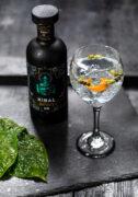 Xibal Gin